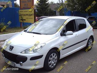 Tren (Yugo) Trasero Con Disco Peugeot 307 2002 2003 2004 2005 2006 2007 2008